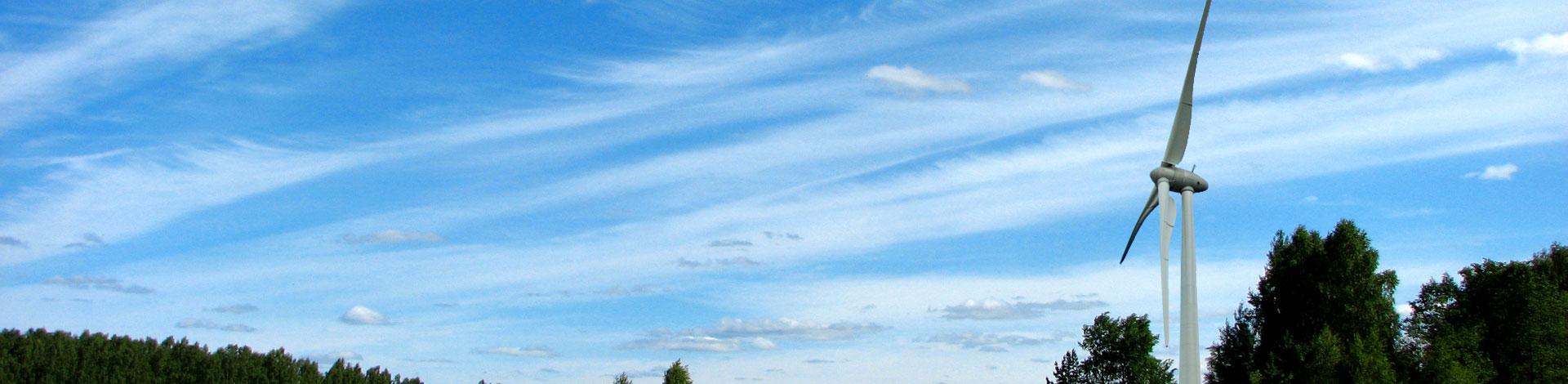 Northumberland Wind Field